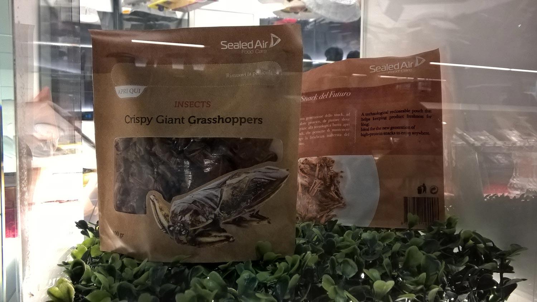 Auf der Expo 2015 wurde nicht nur Krokodil, Zebra und Python kredenzt, sondern auch diverse Insekten. Eines muss man den Krabbeltierchen zugestehen: Proteinhaltig sind sie allemal. Bildquelle: wikimedia.org